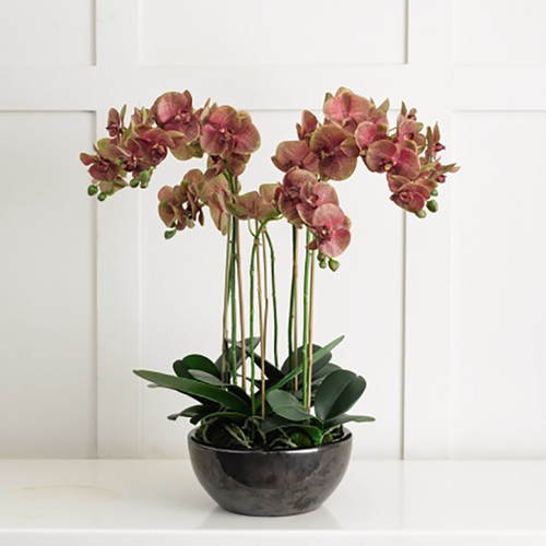 Saturn Orchid Centrepiece