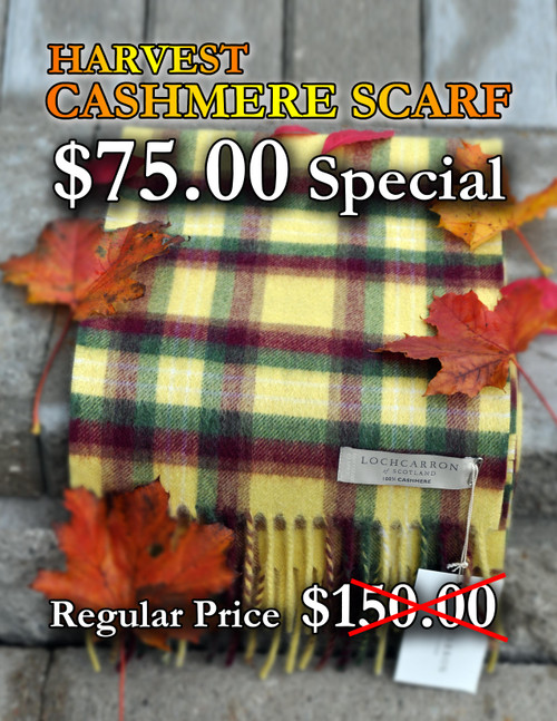 Cashmere Harvest Scarf
