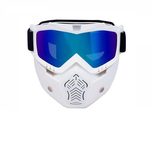 Ski/Snowboard Mask Goggles
