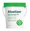 Aloetizer Hand Sanitizer Gel