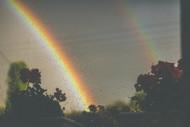 The Oil Rainbow Effect