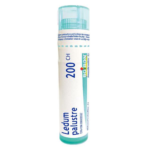 Boiron Tube Ledum Palustre 200 ch