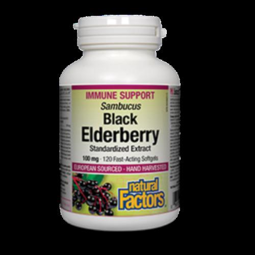Natural Factors Black Elderberry Immune Support 60 softgels