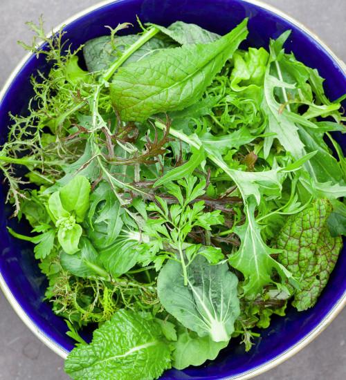 Salad Leaf Summer Mix