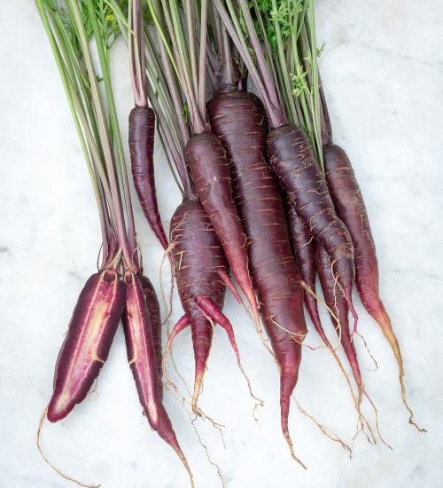Carrot 'Purple Sun' F1