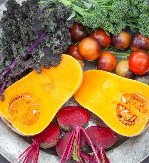 Grow Your Own Superfood Collection