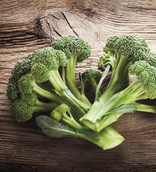 Broccoli (Calabrese) 'Ramoso'