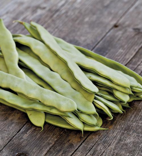 法语豆'利马'
