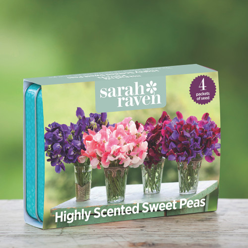 Highly Scented Sweet Pea Seed Tin Collection