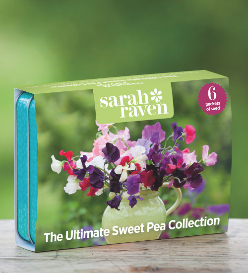 The Ultimate Sweet Pea Seed Tin Collection