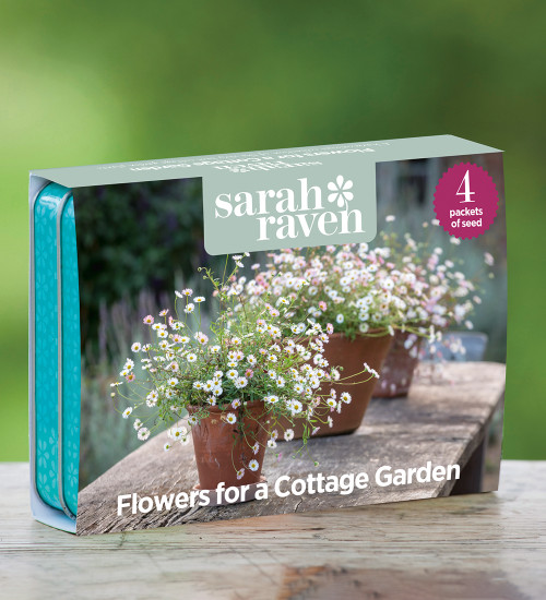 Flowers for a Cottage Garden Seed Tin Collection