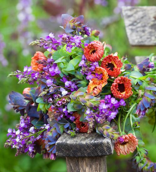 Super-Speedy Cut Flower Collection