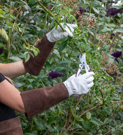 Pruning Gauntlet Gloves