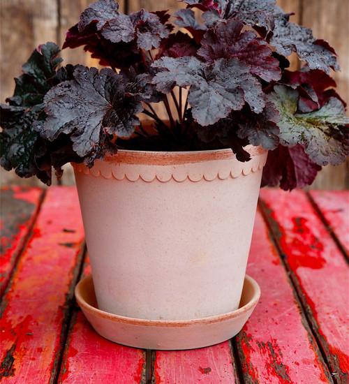 Tuscany Pot and Saucer Set