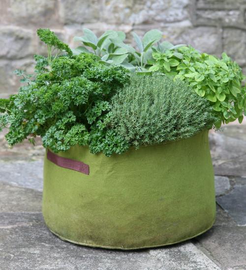 Vigoroot Planters
