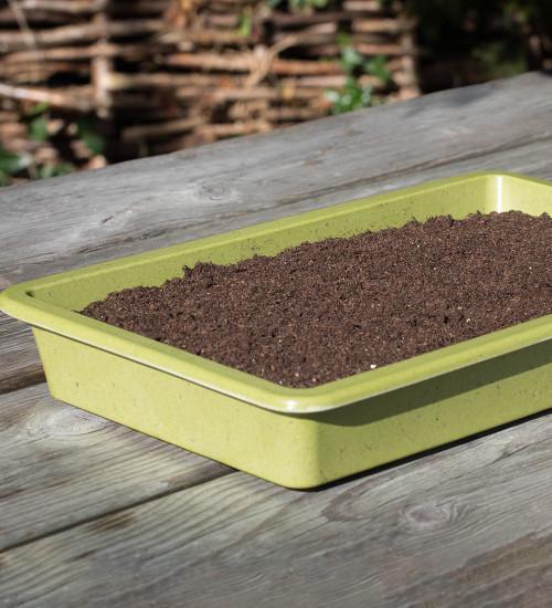 Bamboo Seed Tray
