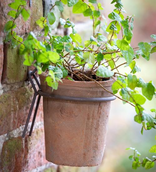 Terracotta Pot with Wall Hanger