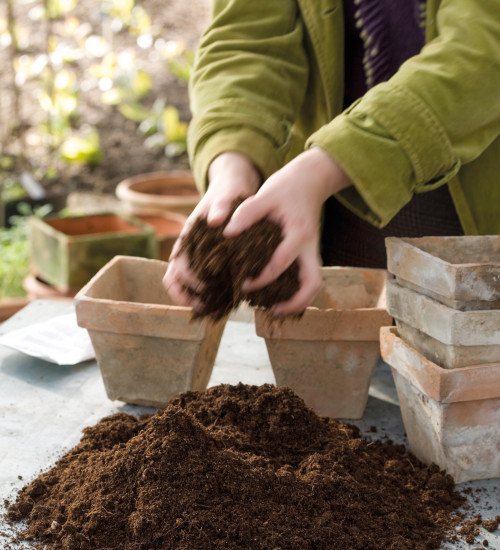 GroChar Seed Compost