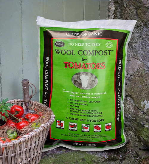 西红柿的泥炭免费羊毛堆肥
