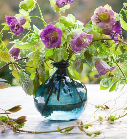 Wobbly Bottle Vase