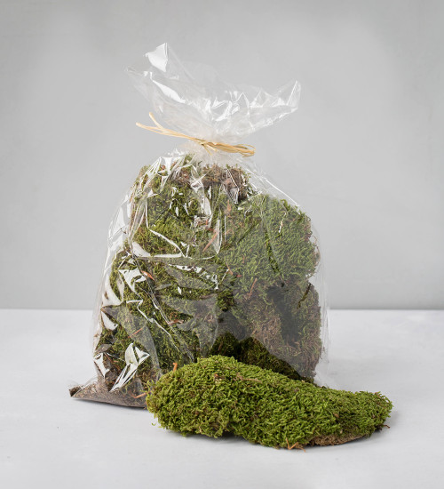 Bag of Faux Moss
