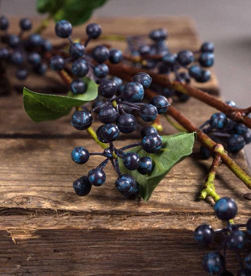 Everlasting Viburnum Berry