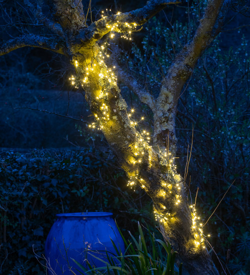 Use Everywhere Cluster Lights