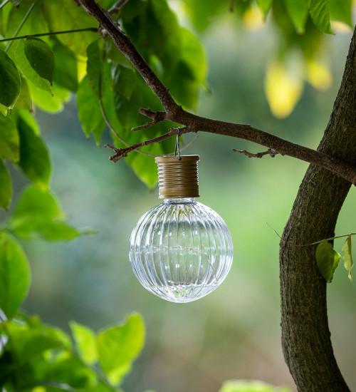 Solar Globe Light Bulbs