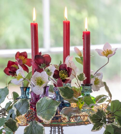 Bordeaux Dinner Candle Set