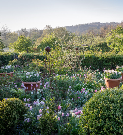 A Year Full of Flowers with Sarah Raven at Netherwood Manor, Herefordshire
