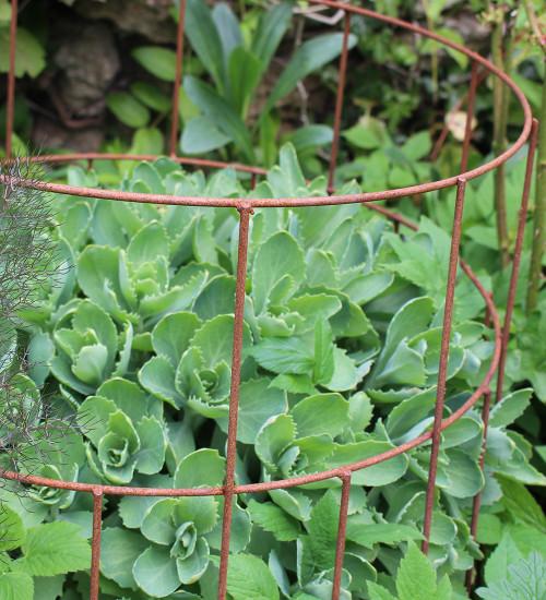 Round Plant Support