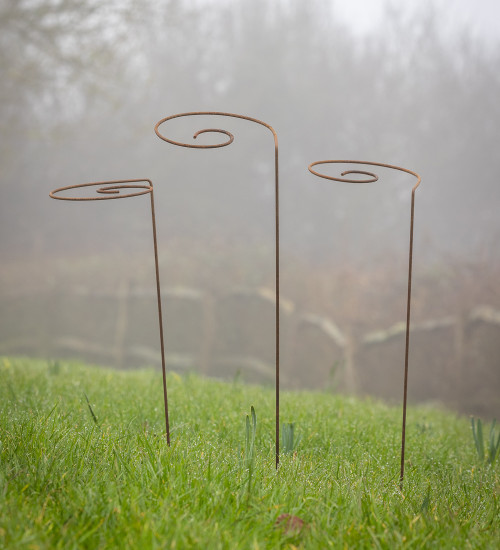 Spiral Plant Stakes