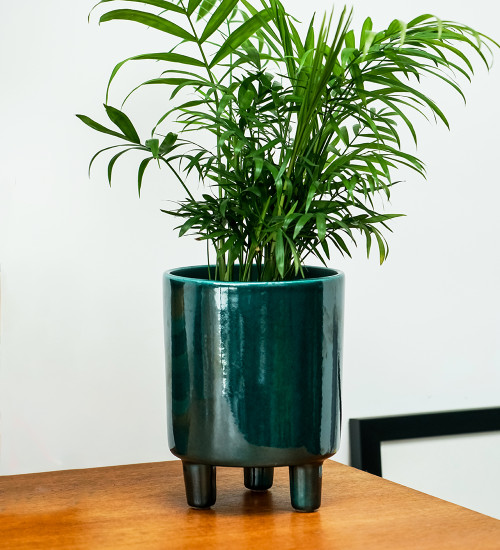 Emerald Ceramic Pot