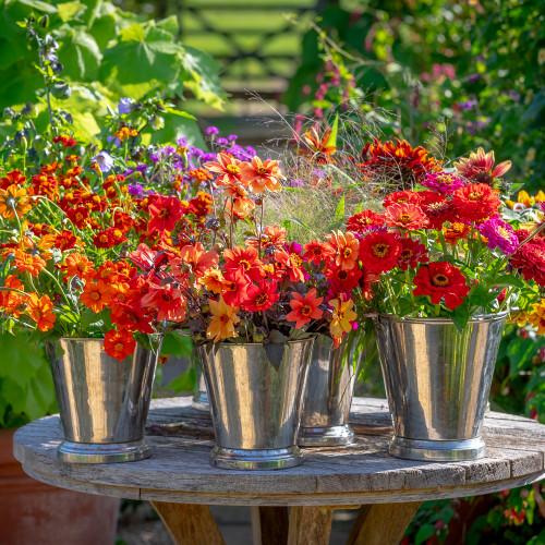 High Summer Cut Flower Collection
