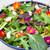 Super Hardy Winter Salad Leaf Mix