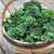 Flower Sprouts (Kalette)