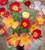 Eschscholzia californica 'Thai Silk Formula Mixture'