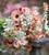 Phlox drummondii grandiflora 'Cherry Caramel'