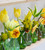 Sherbert Lemon Tulip Collection