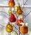 Beaded Fruit