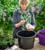 Pots for Successional Planting