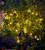 Solar Maroq String Lights