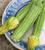 Bestselling Veg Seedling Collection