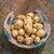 Potato 'Kestrel'