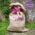 Tulip 'Love Dance'