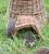Wicker Hedgehog House