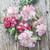 Dianthus caryophyllus 'Benigna White Striped'