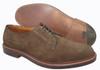 Alden Plain Toe Blucher Dark Brown Suede  #9503