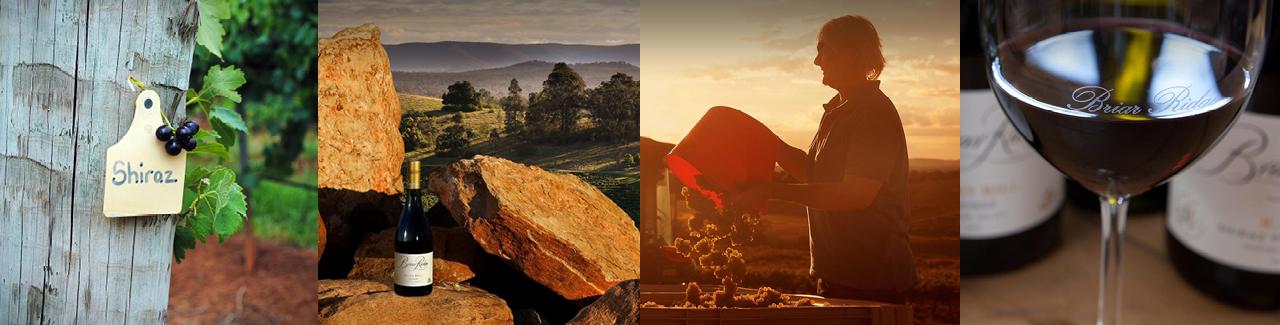 brand-page-banner-image-briar-ridge-1280-1.jpg