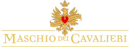 mdc-logo-retina.png
